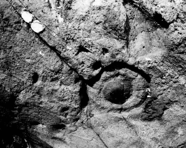 Karekare Rock Form