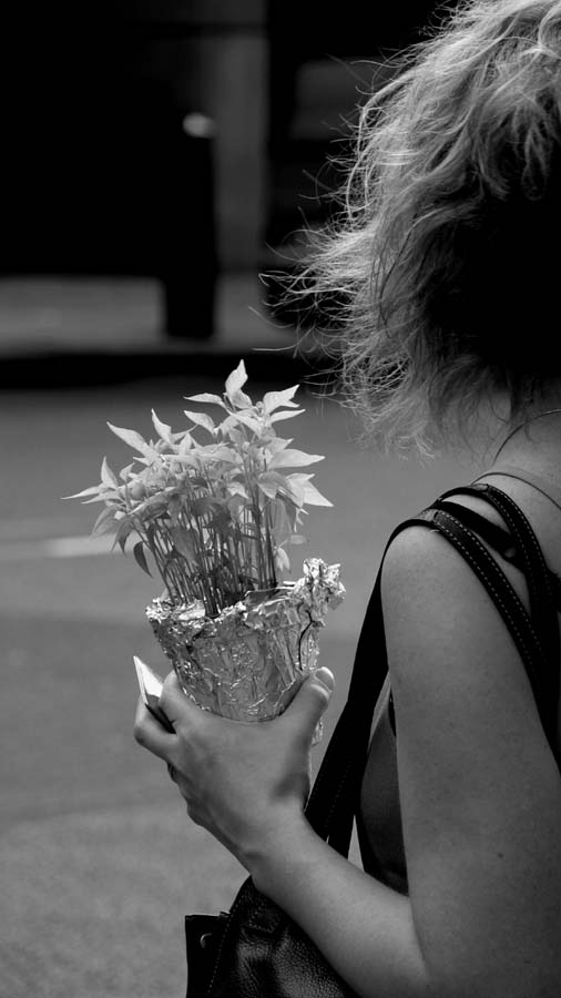 Woman and Plant, London